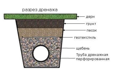 variant-drenazha